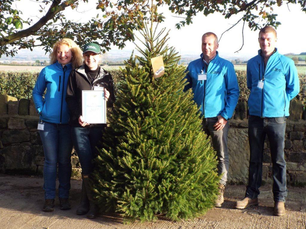 Stop Press Award Winning Christmas Trees 2017 The