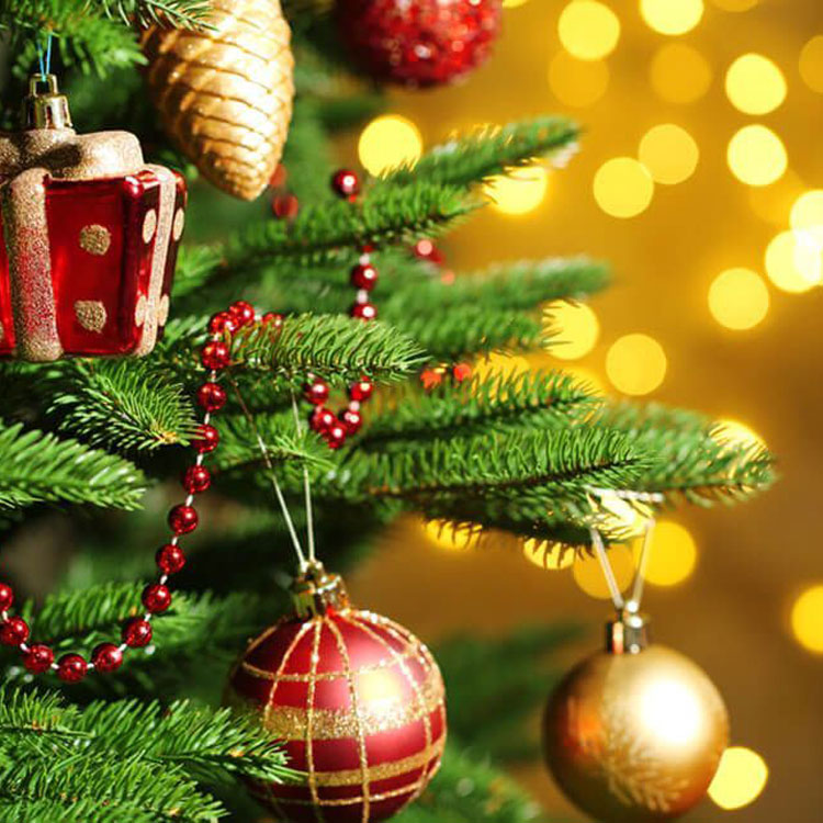 Billingley Christmas Tree Farm | Real Christmas Trees for Collection or Delivery